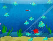 Play Fish Fun