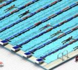Play Swimming Race