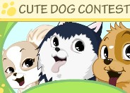 Play Cute Dog Contest