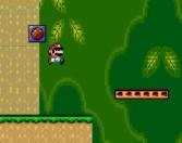 Play Mario Star Hunting