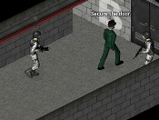 Play Stealth Hunter