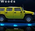 Play 3d Trucks Into The Woods