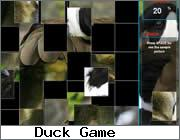 Play Wild Duck Puzzle