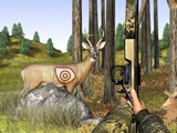 Play Bow Hunt