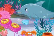 Play Dolphin Show Aquarium
