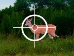 Play Fawn Hunter 3000