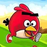 Play Angry Birds Run