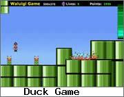 Play Crazy Mario
