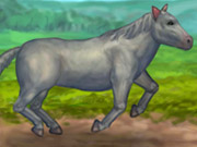 Play My Brave Horse